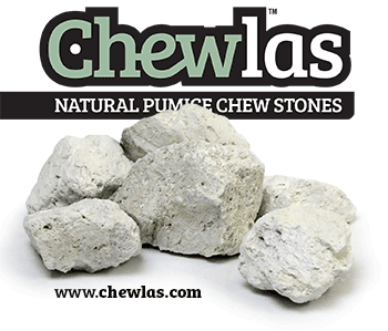 natural pumice chew stones